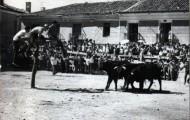 Vacas y rueda en Mayorga