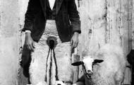 Foto de Pablo de la Viuda con una oveja con cuatro corderos 1970