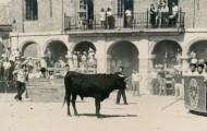 Con el tablero en Mayorga 1972