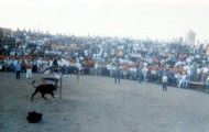 Plaza de toros Mayorga 1990