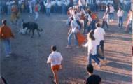 Maletillas mayorganos 1990