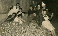 Recogiendo cebollas en Mayorga