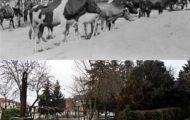 Foto comparando el parque del Rollo de Mayorga antes y ahora